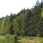 Rybaření na poličských přehradách